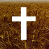 tabernaculo da fé sao paulo